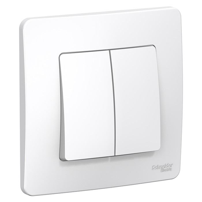 Переключатель Schneider Electric Blanca BLNVS106601 двухклавишный белый